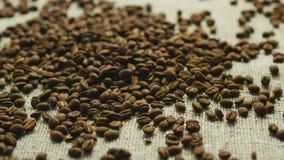 Chicchi di caffè nel disordine stock footage