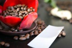 Chicchi di caffè nel fiore rosso del germoglio, carta con la vostra firma Fotografie Stock