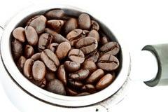 Chicchi di caffè nel supporto del filtro fotografia stock