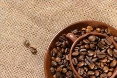 Chicchi di caffè nella tazza marrone Fotografia Stock