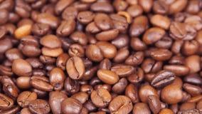 Chicchi di caffè Primo piano Lungo i chicchi di caffè Galleggiando sopra il caffè fritto archivi video