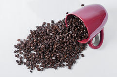 Chicchi di caffè rovesciati Immagine Stock