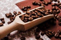 Chicchi di caffè Scopi arrostiti dei chicchi di caffè Imballando per il caffè Fotografia Stock