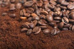 Chicchi di caffè su caffè macinato Fotografie Stock Libere da Diritti