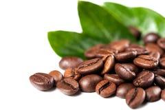 Chicchi di caffè su priorità bassa bianca Fotografie Stock