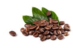 Chicchi di caffè su priorità bassa bianca Immagini Stock