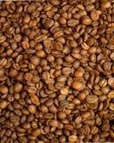 Chicchi di caffè sui precedenti fotografia stock