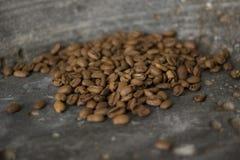 Chicchi di caffè sui precedenti grigi Immagini Stock