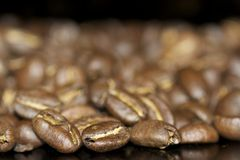 Chicchi di caffè sui precedenti neri immagini stock libere da diritti