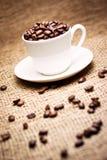Chicchi di caffè in tazza Fotografie Stock Libere da Diritti