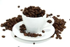 Chicchi di caffè in tazza Fotografia Stock Libera da Diritti