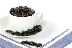 Chicchi di caffè in tazza bianca fotografia stock