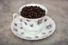 Chicchi di caffè in tazza da the d'annata Immagine Stock