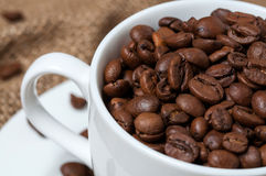Chicchi di caffè in tazza di caffè Fine in su Immagini Stock