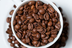 Chicchi di caffè in tazza di caffè Fine in su Fotografia Stock Libera da Diritti