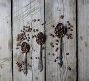 Chicchi di caffè in un cucchiaio immagini stock