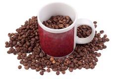 Chicchi di caffè in una tazza Fotografie Stock