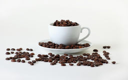 Chicchi di caffè in una tazza Immagini Stock Libere da Diritti