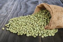 Chicchi di caffè verdi Immagini Stock