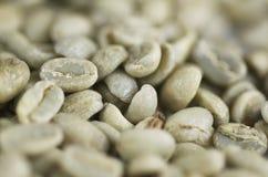Chicchi di caffè verdi macro Immagini Stock Libere da Diritti