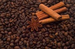 Chicchi e spezia di caffè Immagine Stock