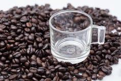 Chicchi vuoti di caffè e della tazza Fotografia Stock
