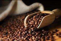 Chicco di caffè Immagine Stock Libera da Diritti