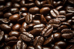 Chicco di caffè Immagini Stock Libere da Diritti