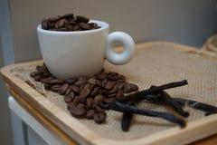 Chicco di caffè arrostito Fotografie Stock