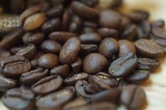 Chicco di caffè arrostito Immagini Stock Libere da Diritti