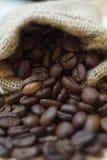 Chicco di caffè arrostito Immagine Stock Libera da Diritti