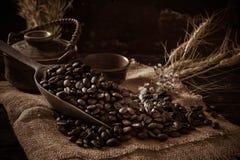 Chicco di caffè arrostito che si purifica dal cucchiaio immagini stock