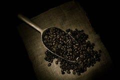 Chicco di caffè arrostito che si purifica dal cucchiaio fotografia stock libera da diritti