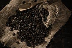 Chicco di caffè arrostito che si purifica dalla borsa immagini stock