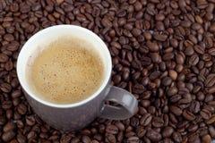 Chicco di caffè con la tazza di caffè Fotografia Stock Libera da Diritti
