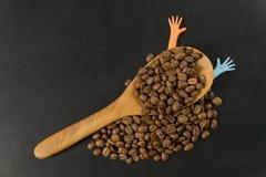 Chicco di caffè in cucchiaio di legno con due mani variopinte immagini stock