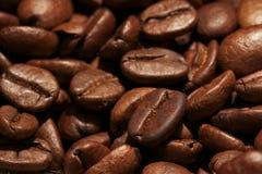 Chicco di caffè per la caffetteria Fotografia Stock Libera da Diritti