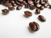 Chicco di caffè su priorità bassa bianca Immagini Stock Libere da Diritti