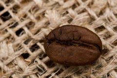 Chicco di caffè su struttura di licenziamento fotografie stock libere da diritti