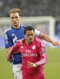 Chicharito  Real Madrid v Schalke 04 Champion League Royalty Free Stock Images