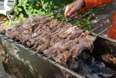 Chiche-kebab Photo stock
