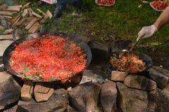 Chiche-kebab de viande et du feu dans l'invention image libre de droits