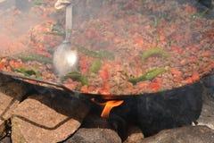 Chiche-kebab de viande et du feu dans l'invention photographie stock libre de droits