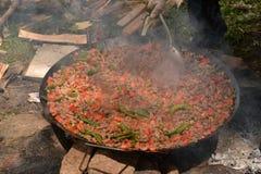 Chiche-kebab de viande et du feu dans l'invention photo stock