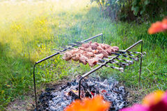 Chiche-kebab grillant sur un feu Photo stock