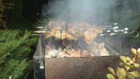 Chiche-kebab sur des brochettes faisant cuire à la nature clips vidéos