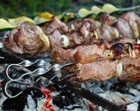 Chiche-kebab sur des brochettes sur le feu Photographie stock libre de droits