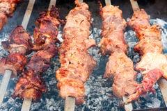 Chiche-kebab sur des brochettes sur le gril Photo libre de droits