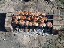Chiche-kebab sur des charbons Photos stock