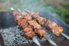 Chiche-kebab sur des charbons Photo libre de droits